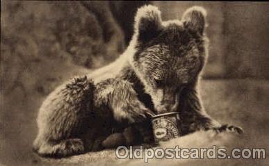 ber001171 - Golden Syrup Bear Bears Postcard Post Card Old Vintage Antique