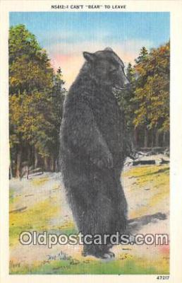 ber002227 - Can't Bear to Leave  Postcard Post Card