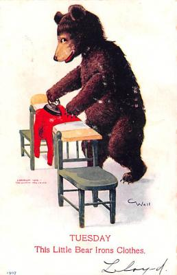 ber007005 - Bear Post Card Old Vintage Antique