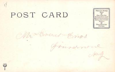 ber007041 - Bear Post Card Old Vintage Antique  back