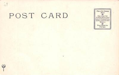 ber007045 - Bear Post Card Old Vintage Antique  back