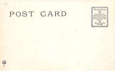 ber007053 - Bear Post Card Old Vintage Antique  back