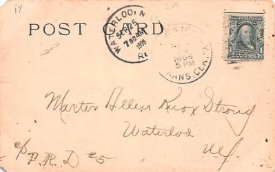 ber007065 - Bear Post Card Old Vintage Antique  back