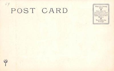 ber007067 - Bear Post Card Old Vintage Antique  back