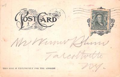 ber007107 - Bear Post Card Old Vintage Antique  back