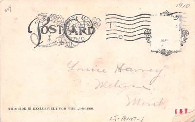ber007119 - Bear Post Card Old Vintage Antique  back