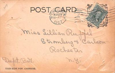 ber007131 - Bear Post Card Old Vintage Antique  back