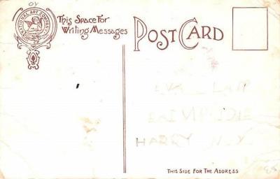 ber007147 - Bear Post Card Old Vintage Antique  back