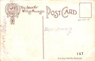 ber007169 - Bear Post Card Old Vintage Antique  back
