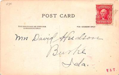 ber007175 - Bear Post Card Old Vintage Antique  back