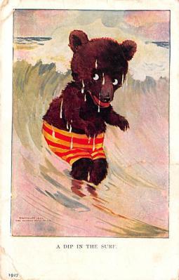 ber007177 - Bear Post Card Old Vintage Antique