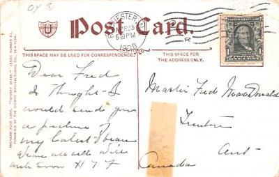 ber007177 - Bear Post Card Old Vintage Antique  back