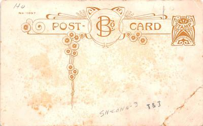 ber007189 - Bear Post Card Old Vintage Antique  back