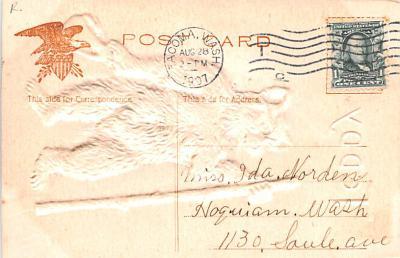 ber007203 - Bear Post Card Old Vintage Antique  back