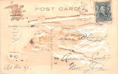 ber007215 - Bear Post Card Old Vintage Antique  back