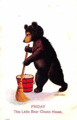 ber007225 - Bear Post Card Old Vintage Antique
