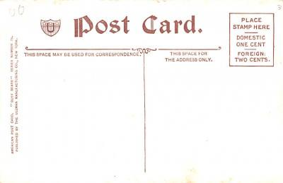 ber007225 - Bear Post Card Old Vintage Antique  back