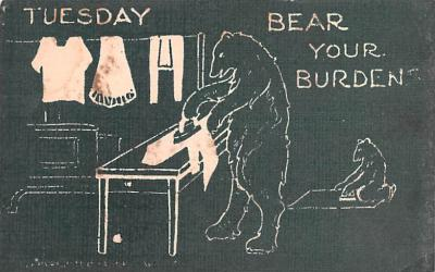 ber007251 - Bear Post Card Old Vintage Antique
