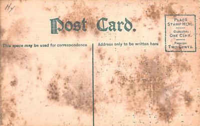 ber007251 - Bear Post Card Old Vintage Antique  back