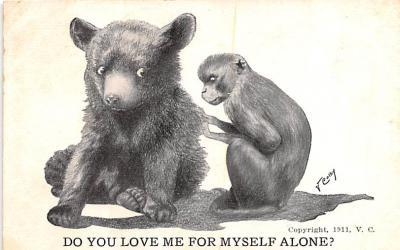 ber007271 - Bear Post Card Old Vintage Antique