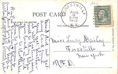 ber007271 - Bear Post Card Old Vintage Antique  back
