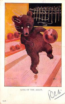 ber007273 - Bear Post Card Old Vintage Antique