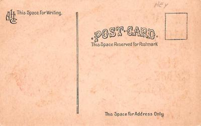 ber007297 - Bear Post Card Old Vintage Antique  back