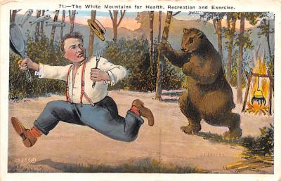 ber007305 - Bear Post Card Old Vintage Antique