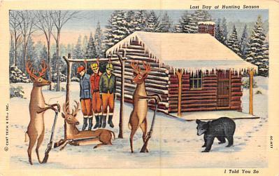 ber007315 - Bear Post Card Old Vintage Antique