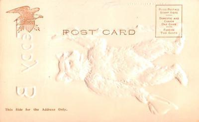 ber007331 - Bear Post Card Old Vintage Antique  back