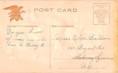 ber007333 - Bear Post Card Old Vintage Antique  back