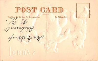 ber007351 - Bear Post Card Old Vintage Antique  back