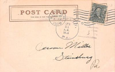 ber007365 - Bear Post Card Old Vintage Antique  back