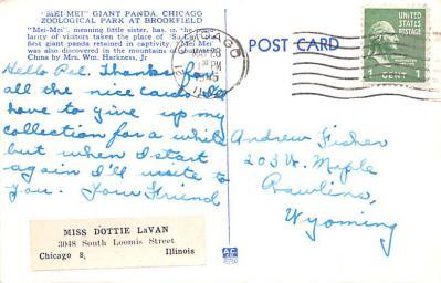 ber007423 - Bear Post Card Old Vintage Antique  back