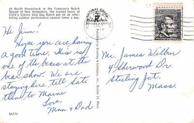 ber007427 - Bear Post Card Old Vintage Antique  back