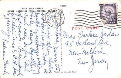 ber007455 - Bear Post Card Old Vintage Antique  back