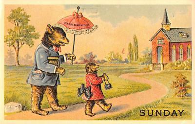 ber007461 - Bear Post Card Old Vintage Antique