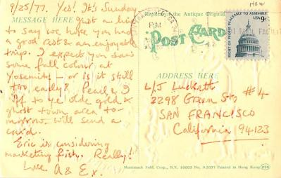 ber007461 - Bear Post Card Old Vintage Antique  back