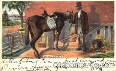 bla001118 - She was bred in Old Kentucky. Black Blacks Postcard Post Card