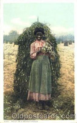bla001271 - Polly in a Peanut Patch Black Blacks Postcard Post Card