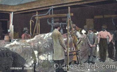 bla001323 - Weighing cotton Black, Blacks Postcard Post Card