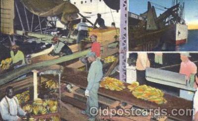 bla001372 - unload Banana New Orleans, LA, USA Black, Blacks Postcard Post Card