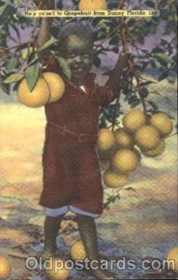 bla001456 - Grapefruitfrom Sunny Florida Black, Blacks Postcard Post Card