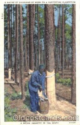 bla001465 - Dixielabd Black, Blacks Postcard Post Card