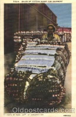 bla001469 - Series D524,Tenn, USA Black, Blacks Postcard Post Card