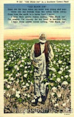 bla001495 - old Black Joe, Cotton Field Black, Blacks Post Card Post Card