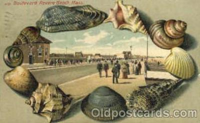 bor001015 - S 53 Boulevard Revere Beach, Mass, USA, Shell Border Postcard Post Card