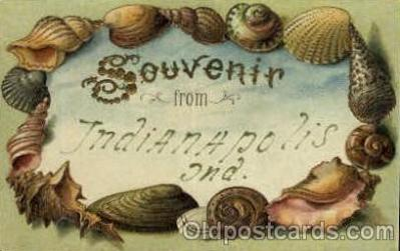 bor001030 - Indianapolis Shells, Shell Border, Postcard Post Card