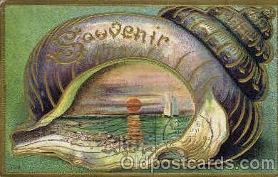 bor001036 - Granite Falls, Washington, Wash, USA Shells, Shell Border, Postcard Post Card