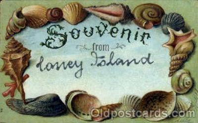 bor001045 - Lonely Island Shells, Shell Border, Postcard Post Card